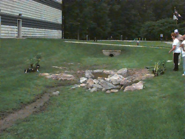 Before the rain garden was planted