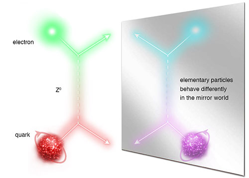 Elementary particles behave differently in the mirror world