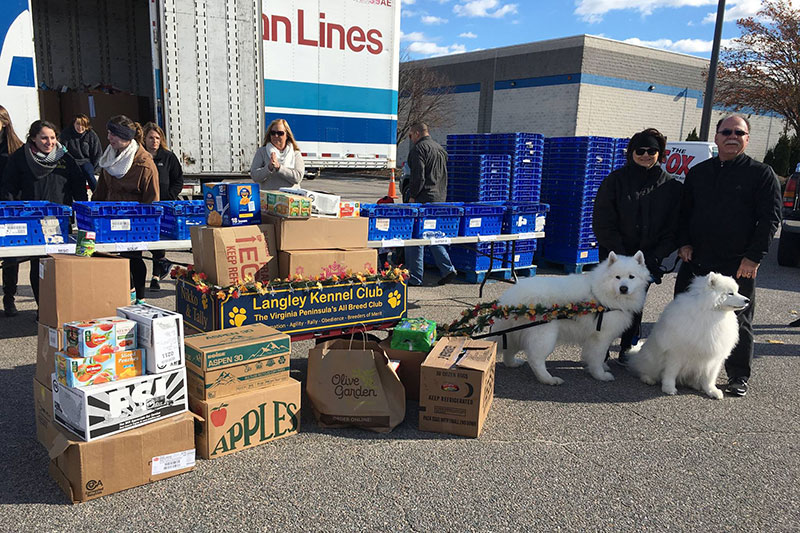 Santa's Sleigh Dogs Deliver Donations to Mayflower Marathon Food Drive