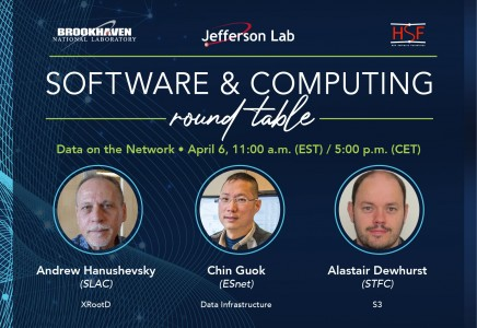 Software & Computing Round Table on Data on the Network